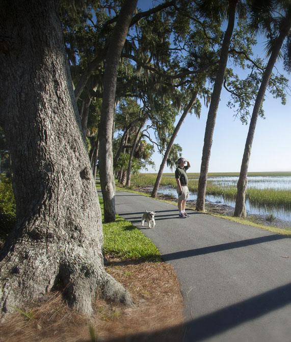 Trails and hiking at The Landings on Skidaway Island
